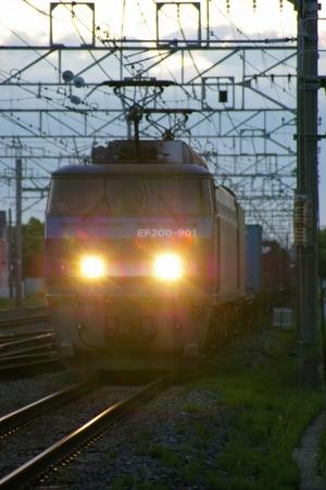 Imgp0966s